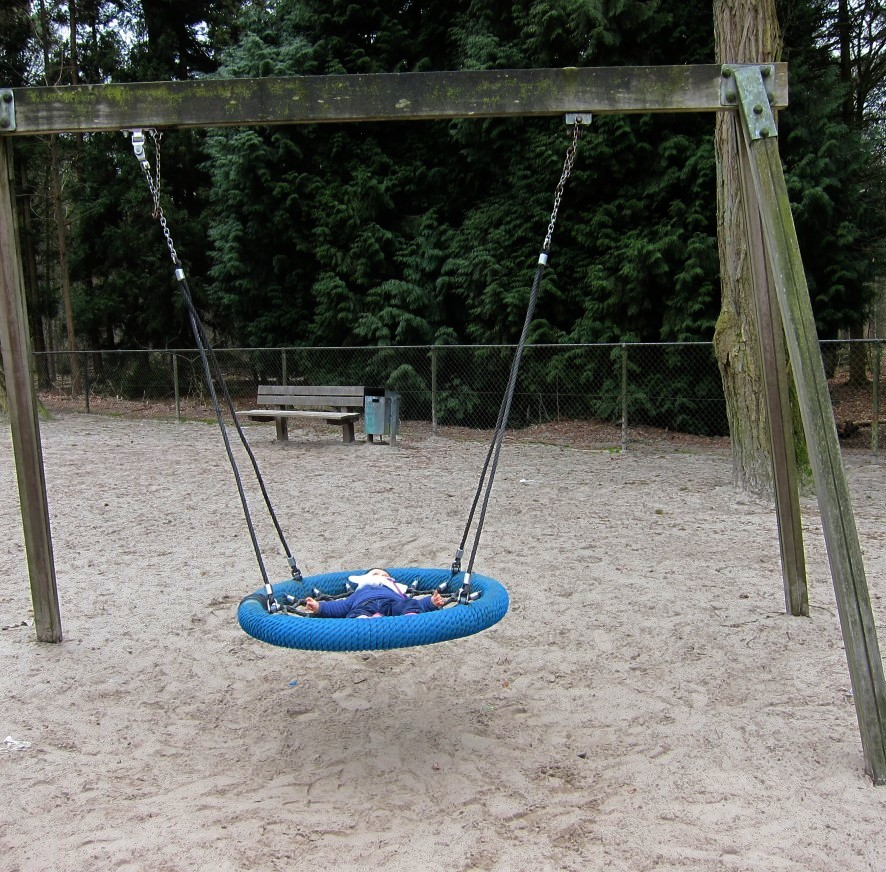 A different type of baby swing