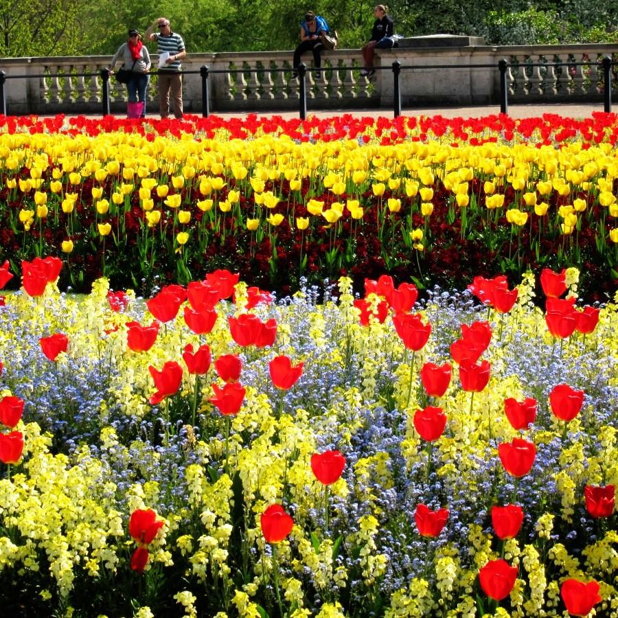 spring at Buckingham Palace
