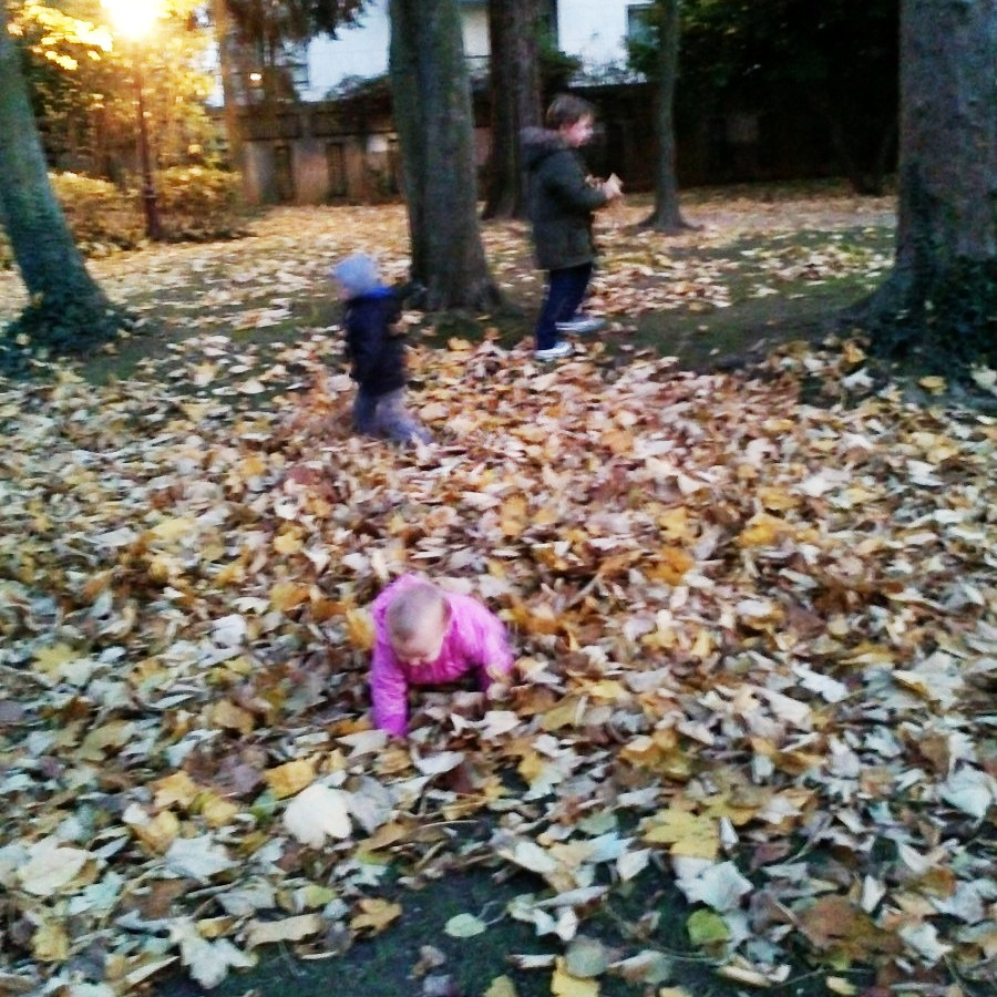 leaves beat the playground