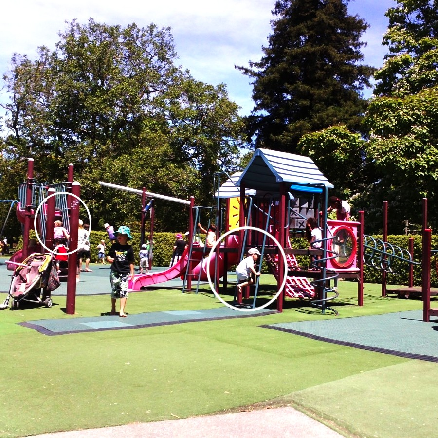 hagley park playground