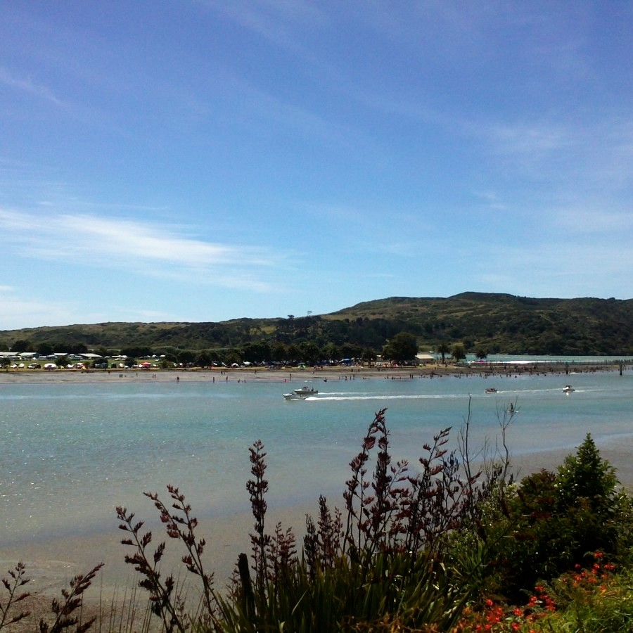 raglan new years day